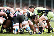Kahn Fotuali'i of Northampton Saints (right) puts the ball into the scrum during the LV Cup Final match at Sandy Park, Exeter<br /> Picture by Andy Kearns/Focus Images Ltd 0781 864 4264<br /> 16/03/2014