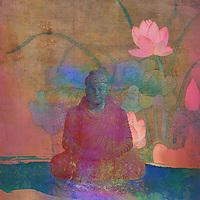 Buddha meditating in a lotus pond.