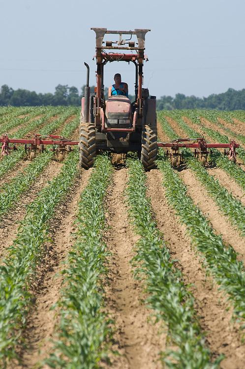 Farmer riding tractor through the fields