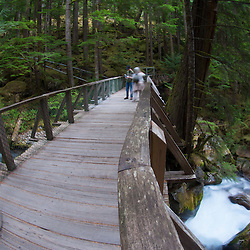 Foot Bridge Over Ladder Creek Falls, North Cascades National Park, Washington, US