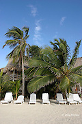 beach at Ramon's Village Resort, San Pedro, Ambergris Caye, Belize, Central America