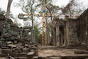 A yellow crane supports the restoration and conservation work on the ancient site of Ta Prohm temple, known as the jungle temple, in Angkor region Siem Reap Province, Cambodia, South East Asia. UNESCO inscribed Ta Prohm on the World Heritage List in 1992. (photo by Andrew Aitchison / In pictures via Getty Images)