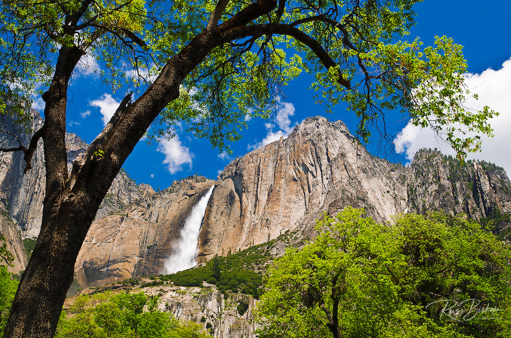 Yosemite Falls, Yosemite National Park, California