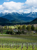 Oregon Wine Press_Illinois Valley
