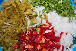 North America, Mexico, Guanajuato State, Guanajuato,  plate of onions, peppers, and cilantro.
