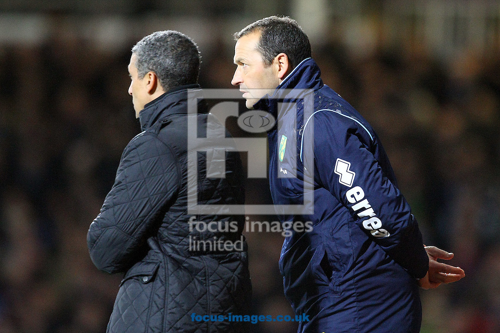 Picture by Paul Chesterton/Focus Images Ltd +44 7904 640267<br /> 11/02/2014<br /> Norwich Manager Chris Hughton and Norwich Assistant Manager Colin Calderwood during the Barclays Premier League match at the Boleyn Ground, London