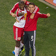 Nov 8, 2015; Harrison, NJ, USA; New York Red Bulls forward Bradley Wright-Phillips (99) celebrates with New York Red Bulls midfielder/defender Connor Lade (5) during the second half of the MLS Playoffs at Red Bull Arena. Mandatory Credit: William Hauser-USA TODAY Sports