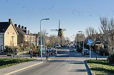 Monster, Westland, Zuid Holland, Netherlands