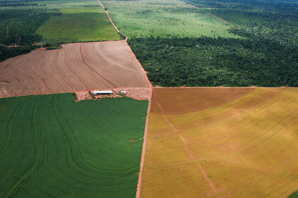 February 23rd 2006, Flight from Alta Floresta to Sinop, Mato Grosso State, Brazil, and the Xingu area....©Daniel Beltra