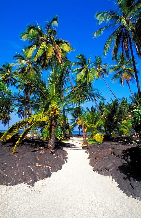 Sand path through lava field and palm trees at Pu'uhonua O Honaunau National Historic Park (City of Refuge), Kona Coast, Hawaii