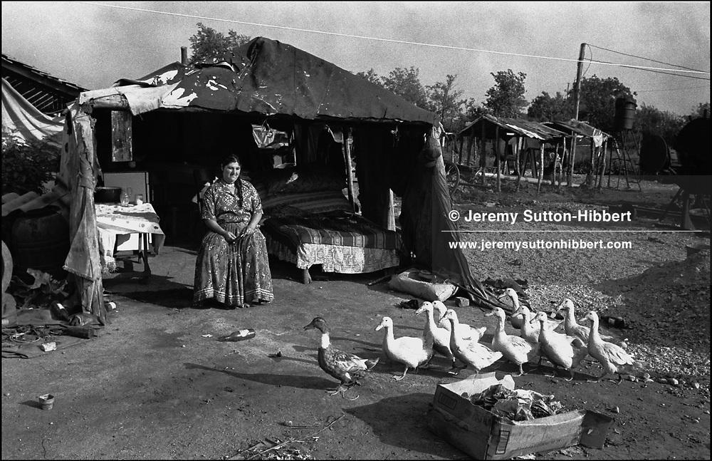 LENA MIHAI. SINTESTI, ROMANIA, AUGUST 1994..©JEREMY SUTTON-HIBBERT 2000..TEL./FAX. +44-141-649-2912..TEL. +44-7831-138817.