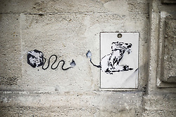 A mural showing a rat and inspired by the graffiti artist Banksy.on February 19, 2019 in Bordeaux, France. Photo by Thibaud Moritz/ABACAPRESS.COM