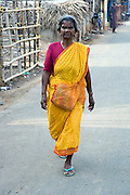 India. woman in yellow sari. South India.
