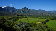 Taro Field, Hanalei Valley, lookout, Kauai, Hawaii