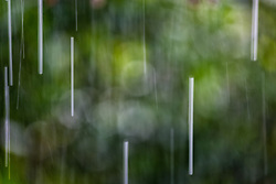 The Effect of Shutter Speed on Falling Rain Set 1-#2