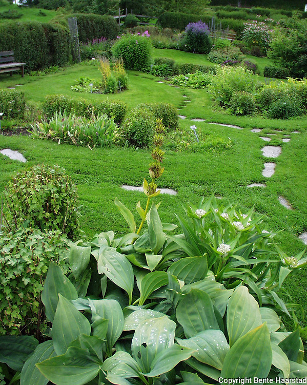Ringve botaniske hage.