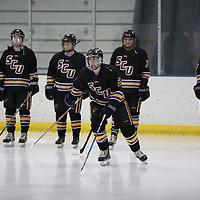 Women's Ice Hockey: University of Wisconsin-Stevens Point Pointers vs. University of St. Catherine Wildcats
