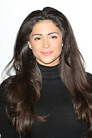 Casey Batchelor, MediaSkin Gifting Lounge, Salmontini Le Resto, London UK, 19 January 2015, Photo by Richard Goldschmidt
