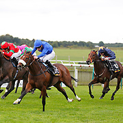 Newmarket 5th October 2013