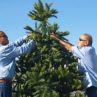 Santa Monica Pier Maintenance Personnel Robert Griffin (left) and Michael Lopez install an 8 foot Christmas Tree at the Santa Monica Pier on Tuesday, November 9, 2010.