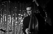 Bassist Viktor Krauss performing with the Jack Silverman Ordeal in Nashville, TN.