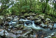 River Plym, Dartmoor, Devon.