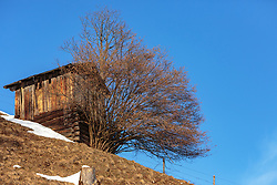 THEMENBILD - ein Heuschober (Heustadl) mit Baum mit restlichen Schneeflächen im Frühjahr, aufgenommen am 28. Februar 2018, Zell am See, Österreich // a haystack with tree with remaining snow in spring on 2018/02/28, Zell am See, Austria. EXPA Pictures © 2018, PhotoCredit: EXPA/ Stefanie Oberhauser