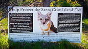 Interpretive sign for the Island Fox, Santa Cruz Island, Channel Islands National Park, California USA