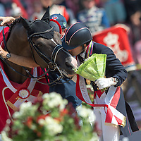 ECCO FEI European Jumping, Dressage and ParaDressage Championships 2013, Herning, Denmark