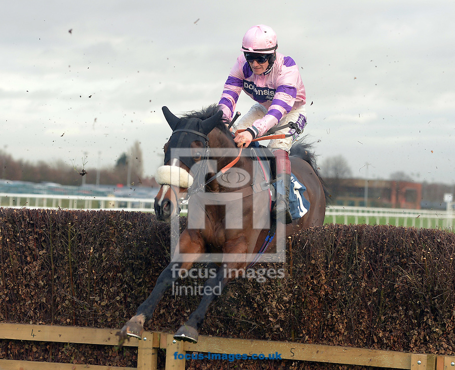 A preview of this weekend's favourites in UK Racing.<br /> Picture by Martin Lynch/Focus Images Ltd 07501333150<br /> 09/12/2016<br /> <br /> Original caption:<br /> BOUVREUIL at Doncaster 29-12-15.