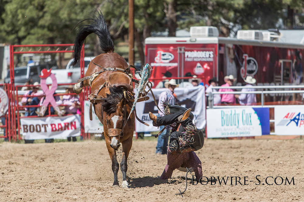 Saddle bronc rider Jake Foster has a rough dismount from Summit Pro Rodeo's 144 in the first performance of the Elizabeth Stampede on Saturday, June 2, 2018.