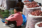 At the 5-day-market. Dried red hot chili peppers.