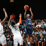 2015 NCAA Women's Basketball