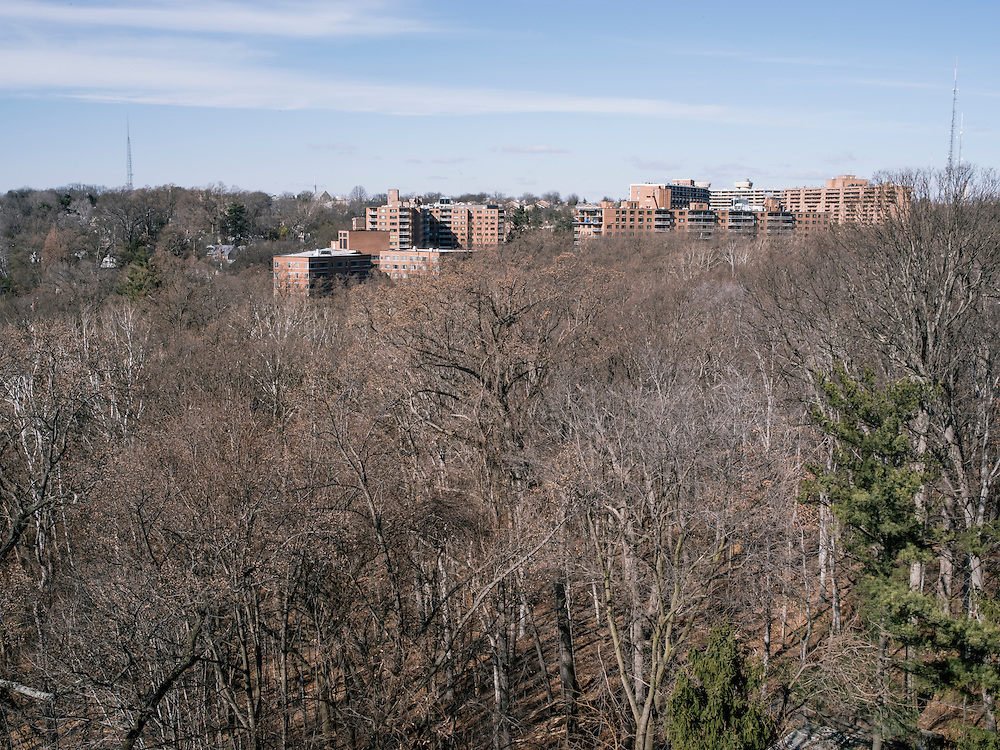 The view from Diane Rehm's 14th floor home in a condominium complex in the Glover Park area of Washington, D.C.