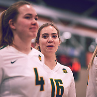 2nd year outside hitter, Brittany Rousseaux (16) of the Regina Cougars during the Women's Volleyball home game on Fri Jan 25 at Centre for Kinesiology, Health & Sport. Credit: Arthur Ward/Arthur Images