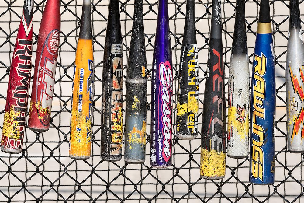Metal baseball bats are lined up along a batting cage at a company picnic.