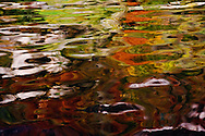 Abstract reflection of autumn colors on Lake Lucerne, Lucerne, Switzerland