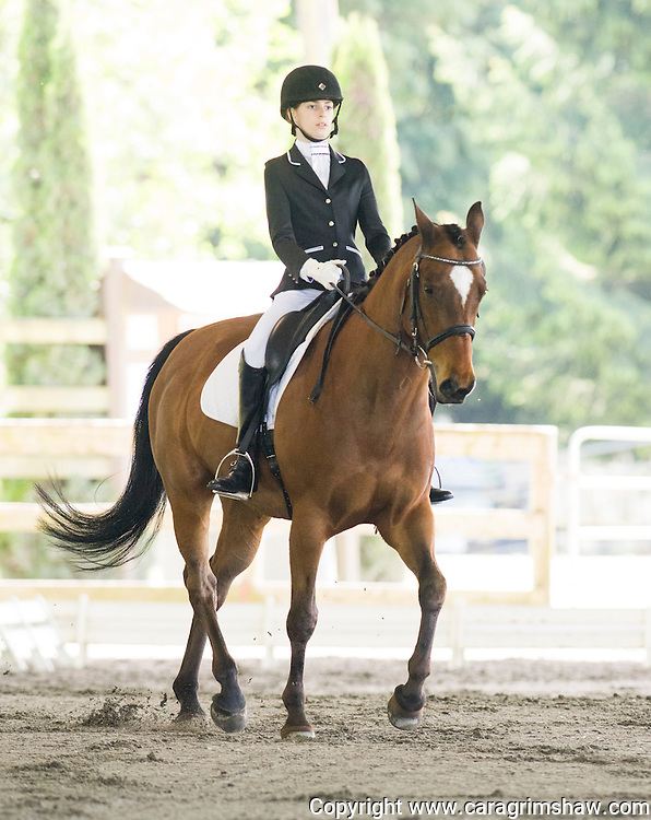 Southland Riding Club<br /> Spring Dressage show<br /> May 13 2016<br /> Caragrimshaw.com <br />  PLEASE NO REMOVING WATERMARK