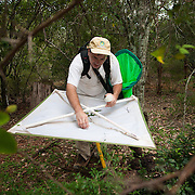 "A researcher, Dr. Steven Lingafelter, collects insects that have fallen onto his ""beating sheet""after he has tapped on tree branches and other vegetations with a stick, Aguacate and Zapotén in Parque Nacional Sierra de Bahoruco"