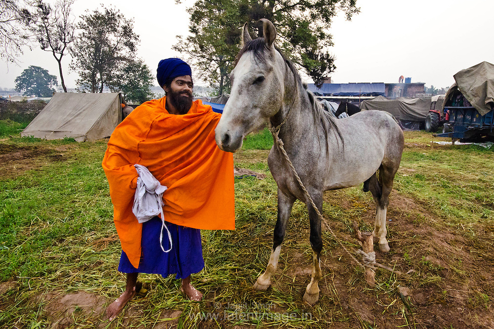 Nihang taking care of his horse in the chhawani during Hola Mohalla