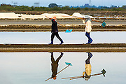24 APRIL 2013 - SAMUT SONGKHRAM, SAMUT SONGKHRAM, THAILAND: Workers walk out of the salt fields after an early morning shift near Samut Songkhram, Thailand. The 2013 salt harvest in Thailand and Cambodia has been impacted by unseasonably heavy rains. Normally, the salt fields are prepped for in December, January and February, when they're leveled and flooded with sea water. Salt is harvested from the fields from late February through May, as the water evaporates leaving salt behind. This year rains in December and January limited access to the fields and rain again in March and April has reduced the amount of salt available in the fields. Thai salt farmers are finishing the harvest as best they can, but the harvest in neighboring Cambodia ended 6 weeks early because of rain. Salt has traditionally been harvested in tidal basins along the coast southwest of Bangkok but industrial development in the area has reduced the amount of land available for commercial salt production and now salt is mainly harvested in a small part of Samut Songkhram province.      PHOTO BY JACK KURTZ