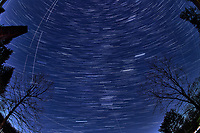 Winter Nighttime Sky Over New Jersey. Composite star trail image (21:00 - 21:29) taken with a Nikon D850 camera and 8-15 mm fisheye lens (ISO 800, 15 mm, f/8, 30 sec). Raw images processed with Capture One Pro and the composite created with Photoshop CC (statistics, maximum).