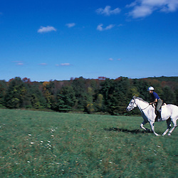 Kent, CT. Katharine Kane rides a horse on Skiff Mountain in the Litchfield Hills of western Connecticut.