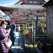 TOKYO, JAPAN - JANUARY 1 : A woman offer prayers at Sensoji Buddhist temple in Asakusa district in Tokyo on Sunday, January 1, 2017. Japan celebrated the start of 2017 for the Year of the Rooster. (Photo by Richard Atrero de Guzman/NURPhoto)