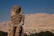 Egypt. Louxor - collosses of Memnon at the entrance of the kong valley  in Thebes  Louxor - Egypte    /  colosses de Memnon a l'entree de la vallee des rois  a Thebes  Louqsor - Egypt   /  LOUX026