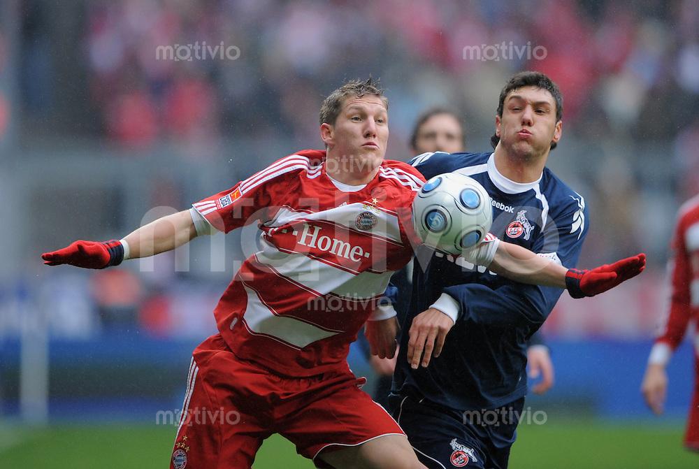 Fussball   1.Bundesliga 2008/2009  21.02.2009    21. Spieltag FC Bayern Muenchen  -  1. FC Koeln Bastian Schweinsteiger (li, FCB) gegen  Kevin Pezzoni (Koeln)