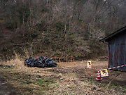 Black sacks containing radiation-contaminated foliage and debris sit beside an abandoned house, near Litate village, Japan. Homes throughout the Fukushima area lie abandoned and there are fears that even if some residents do get to return most of these small communities will die out in time.