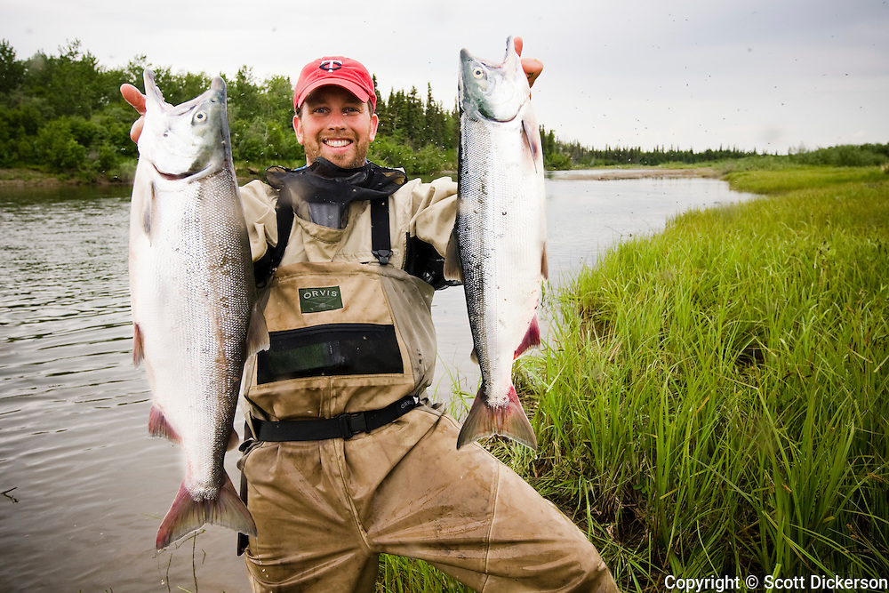 Fly fisherman, Anders Gustafson, holds up a two fresh sockeye salmon caught on the Mulchatna River in Bristol Bay, Alaska.