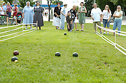 Sr. Catherine Veierstahler, a Sister of Charity of St. Joan Antida, tosses a bocce ball during a bocce tournament held during the annual St. Joan Antida High School reunion, held July 22 at the Henry Meier Festival Grounds in Milwaukee. (Photo by Sam Lucero)