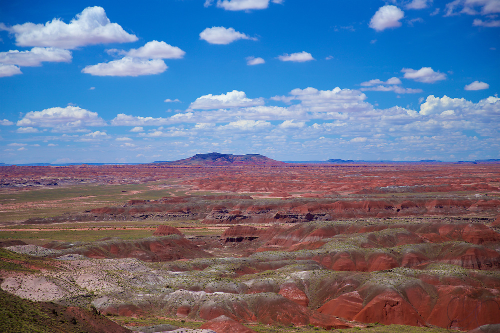 The Chinle formation of rock, deposited between 227 and 205 million years ago by a river system in a time when Arizona was hot, humid and lush - helped develop this amazing colorful landscape - the painted desert.